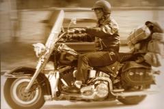 BrigitaKoklic_Harley4_00137