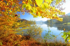 Slivnisko_jezero_jeseni
